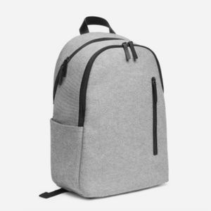 Everlane commuter backpack
